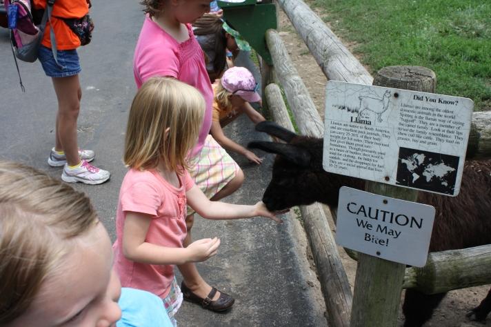 Caution: We May Bite!